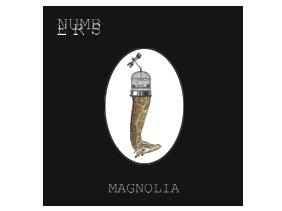 numbers_magnolia B