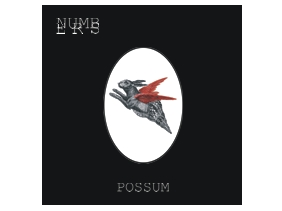 numbers_possum B