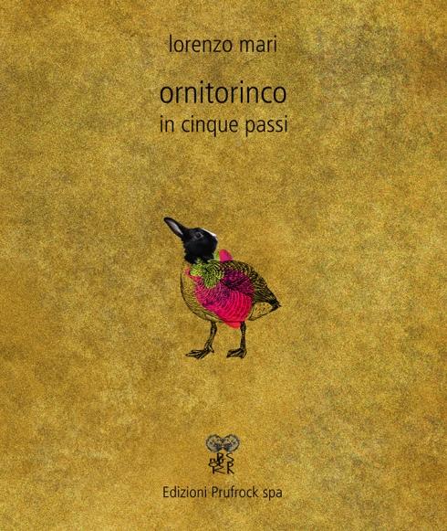 copertina ornitorinco in cinque passi B